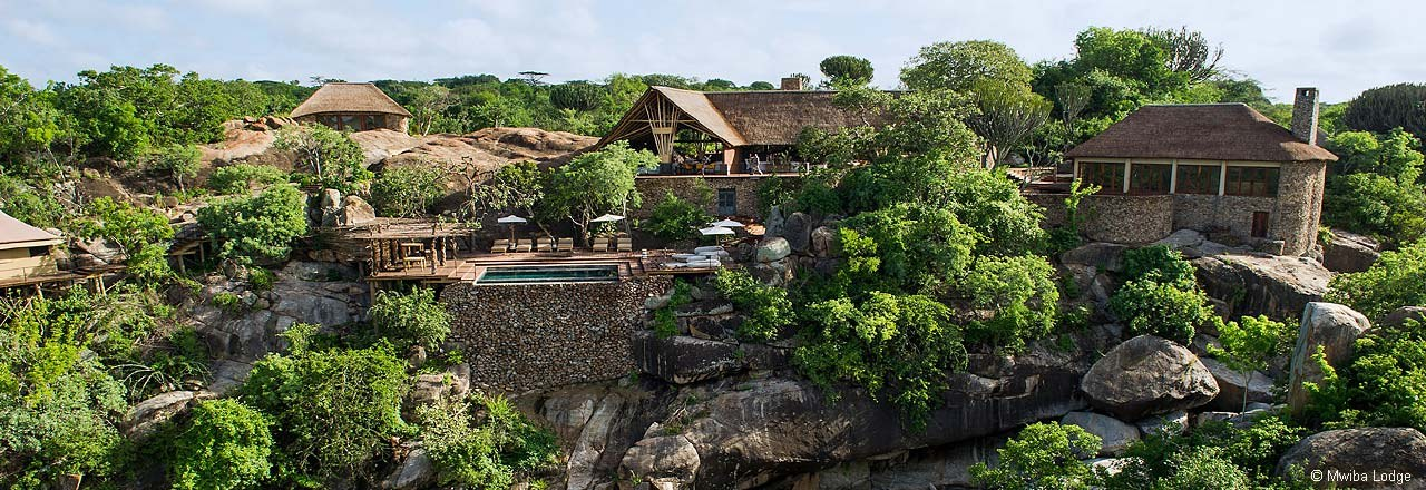 Mwiba Lodge - Relax by the pool